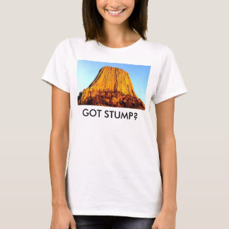 Flat Earth Has No Forests Got Stump? Women's Tee