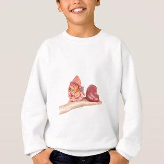 Flat hand showing model human kidney sweatshirt