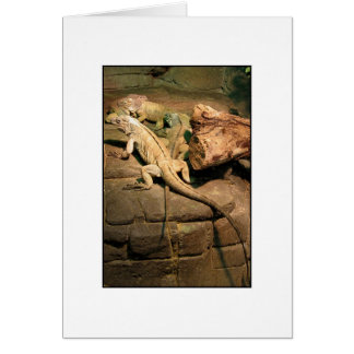 Flat out like a lizard drinking - Greeting Card