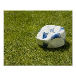 Flat soccer ball in grass, Germany Poster