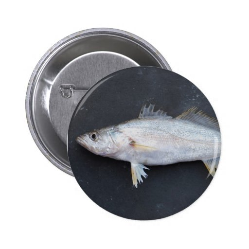 Flathead Mullet Pinback Buttons