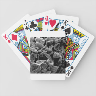 flattened cells capture bicycle playing cards