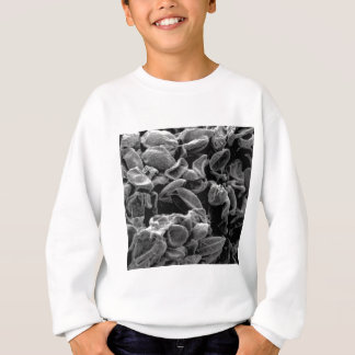flattened cells capture sweatshirt