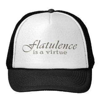 Flatulence is a Virtue Hat