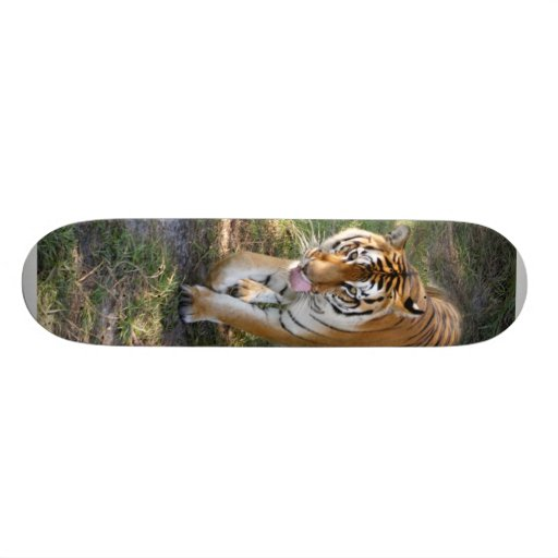 Flavio 012 skate decks
