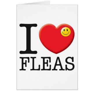 Fleas Love Greeting Card