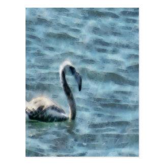 Fledgling Flamingo At Sea Watercolor Postcard