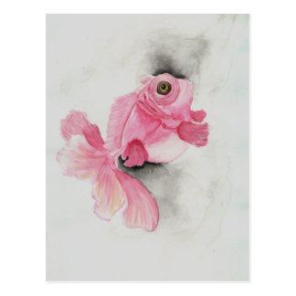 Flesh Moor - Pink Goldfish Watercolor Painting Postcard