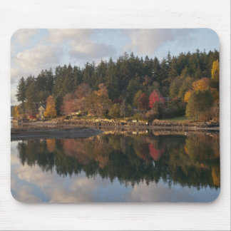 Fletcher Bay Mouse Pad