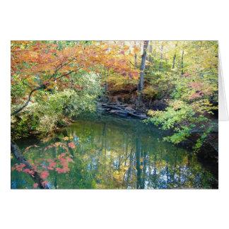 Fletcher Park Autumn Water Scene Greeting Card