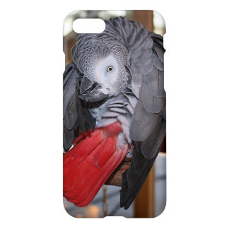 Flexible Congo African Grey Parrot with Red Tail iPhone 7 Case