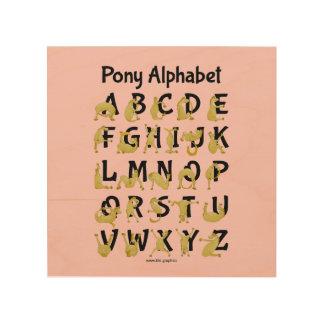 Flexible Pony | Alphabet Chart Wood Canvas