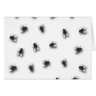 Flies Card