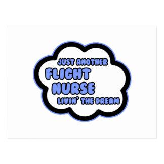 Flight Nurse .. Livin' The Dream Postcard