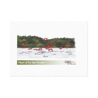 Flight of the Ibis Canvas Print