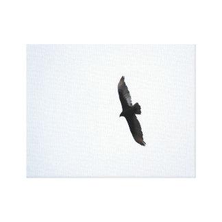 Flight Stretched Canvas Print