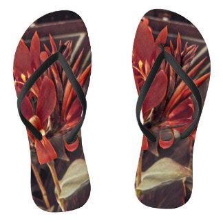 Flip flops: Red Folk Art Flowers Thongs