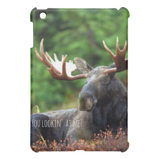 Flirty Wild Moose Photograph Alaska Wilderness Case For The iPad Mini