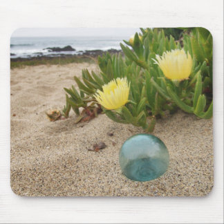 Float with yellow ice plant mouse pads