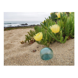 Float with yellow ice plant postcard