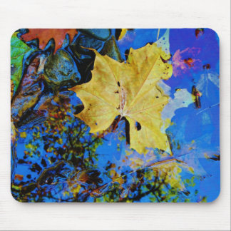 floating fall leaf with reflection of blue sky mouse pads