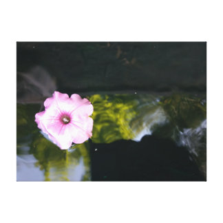 Floating Flower Canvas Print
