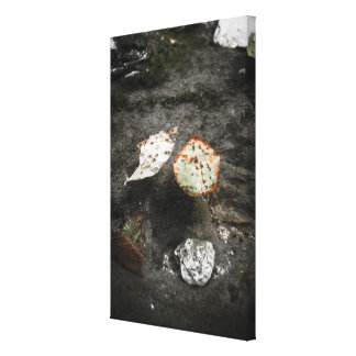 Floating leaves canvas print