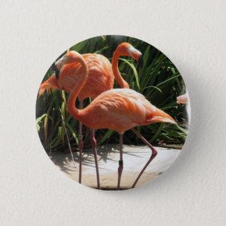 Flock of Flamingos Button