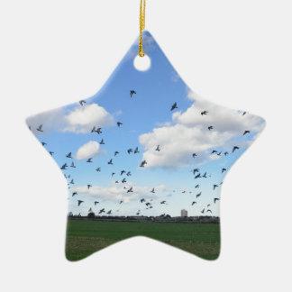 Flock Of Pigeons Ceramic Star Decoration