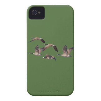 Flock of wild geese iPhone 4 cases