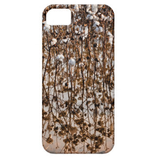 Flooded Cotton Gossypium Field iPhone 5 Covers