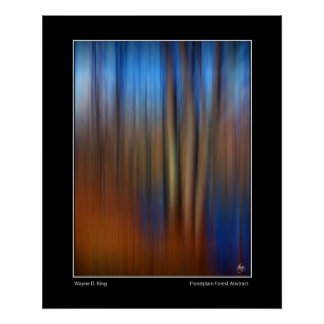 Floodplain Forest Abstract Poster
