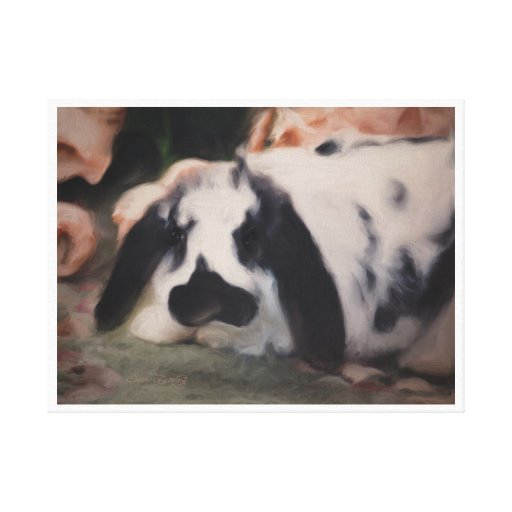 FLOPPY EARED BUNNY STRETCHED CANVAS PRINTS