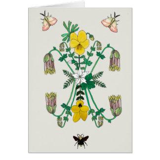 Flora and Fauna Card