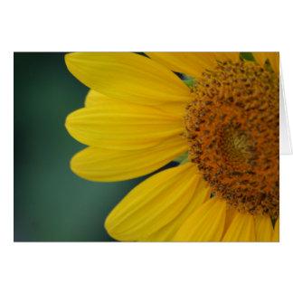 Flora dela Sol card
