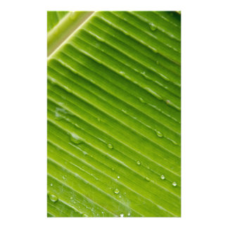 Flora Dominica 1 Customized Stationery