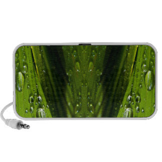 Flora Reflections in water iPod Speaker