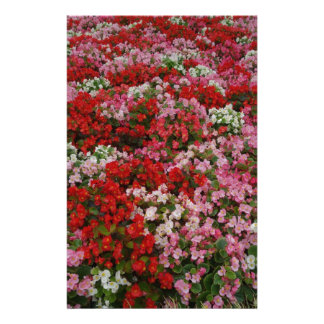 flora custom stationery