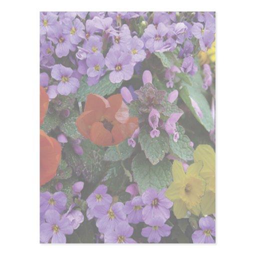 Floral Bouquet- Postcard