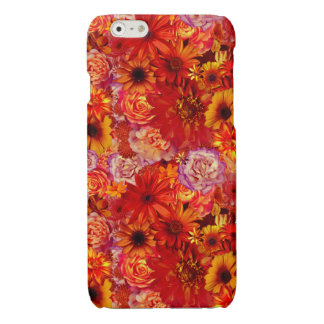 Floral Bright Rojo Bouquet Rich Red Hot Daisies
