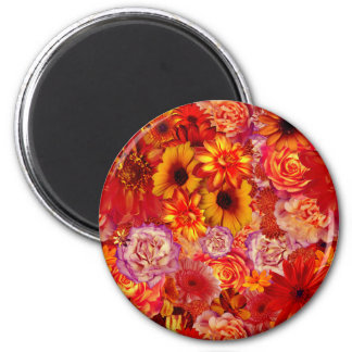 Floral Bright Rojo Bouquet Rich Red Hot Daisies Magnet