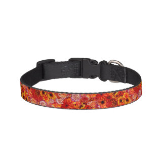 Floral Bright Rojo Bouquet Rich Red Hot Daisies Pet Collar