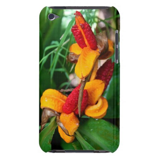Floral Case-Mate iPod Touch Barely There Case iPod Touch Cases