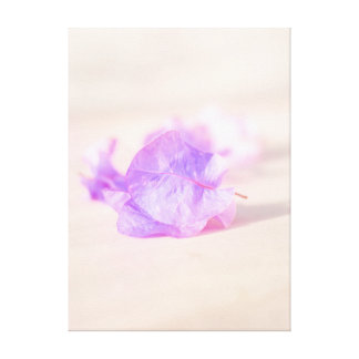 floral collection canvas print