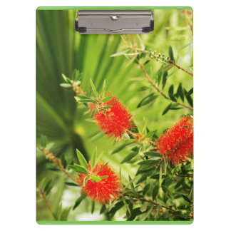 floral collection clipboards