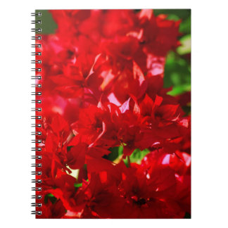 floral collection notebook
