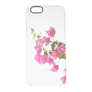 floral collection. pink clear iPhone 6/6S case