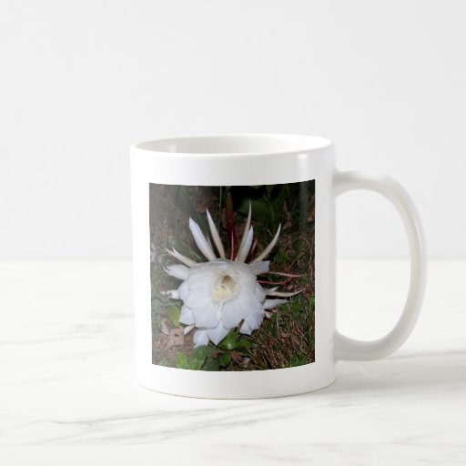 floral creations mugs