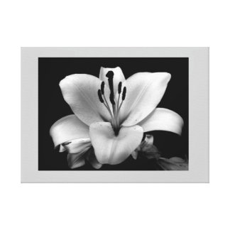 Floral Custom 24 X 18 Canvas Stretched Canvas Print