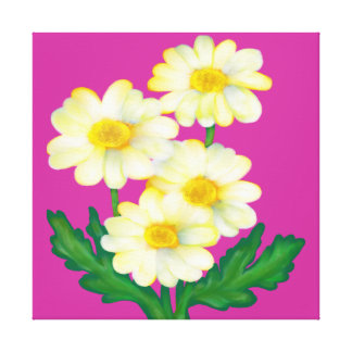 floral,daisy,edit background color stretched canvas prints